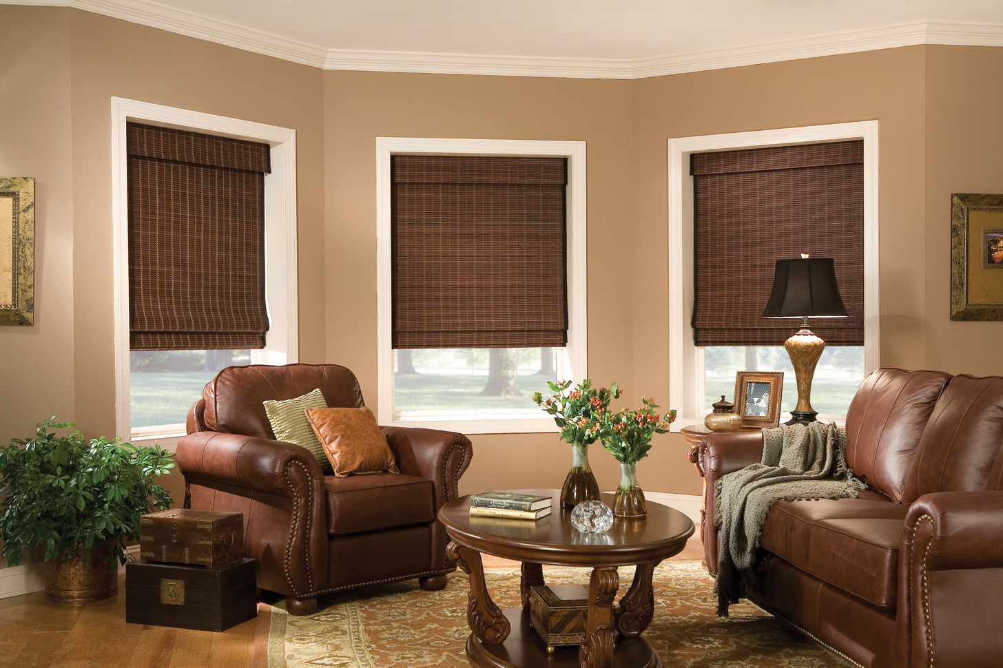 Woven Woods Shades in a living room